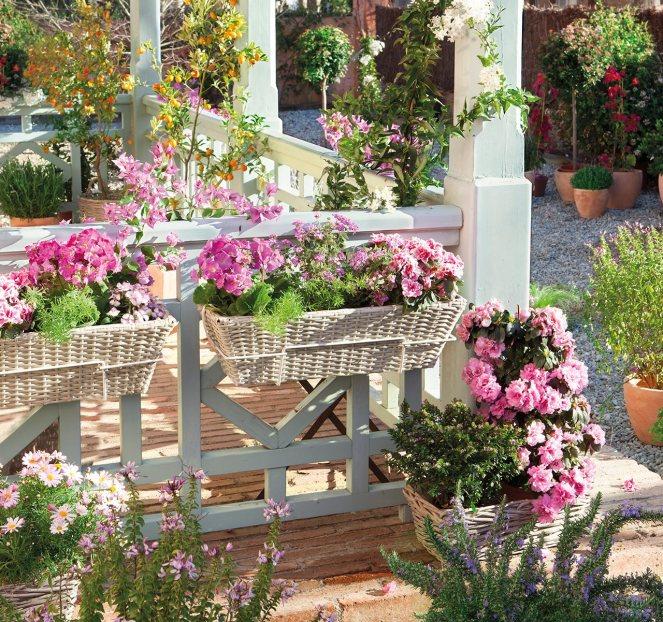 porche_con_jardineras_repletas_de_flores_1280x1201
